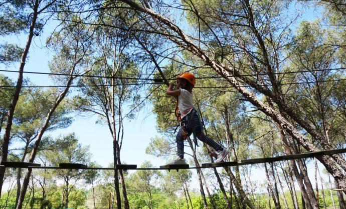 Parcours forestier en Provence @ Storm