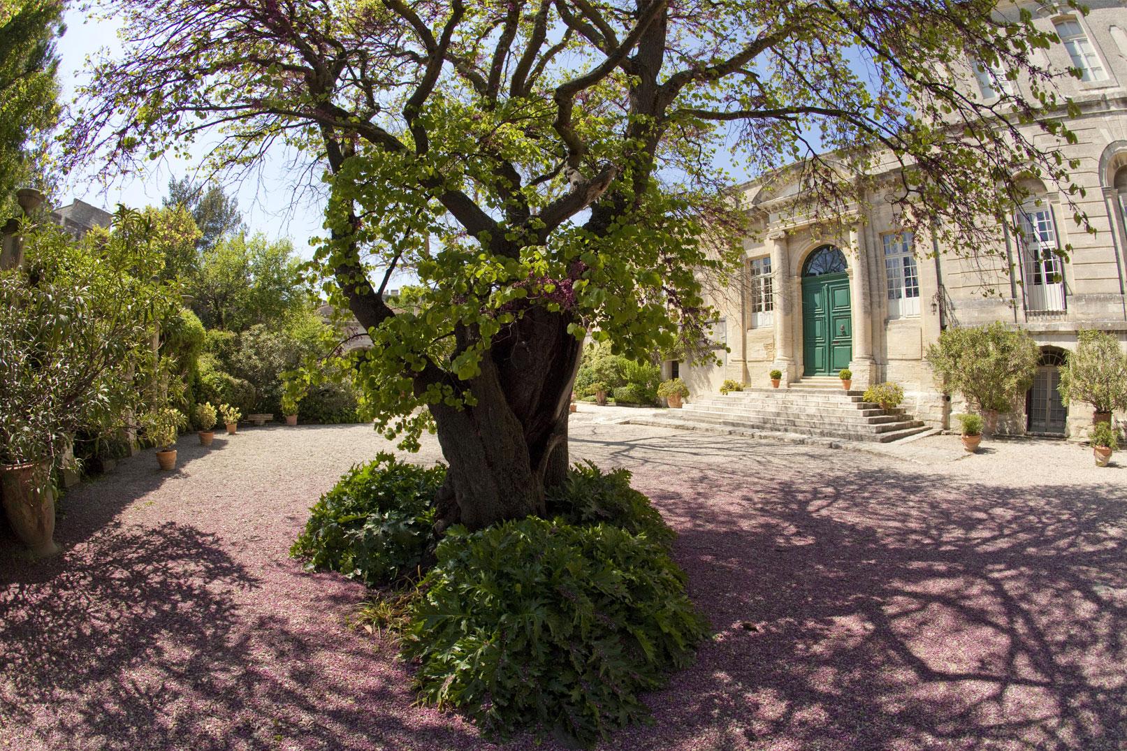 Zen en beschouwing in de tuinen van de abdij