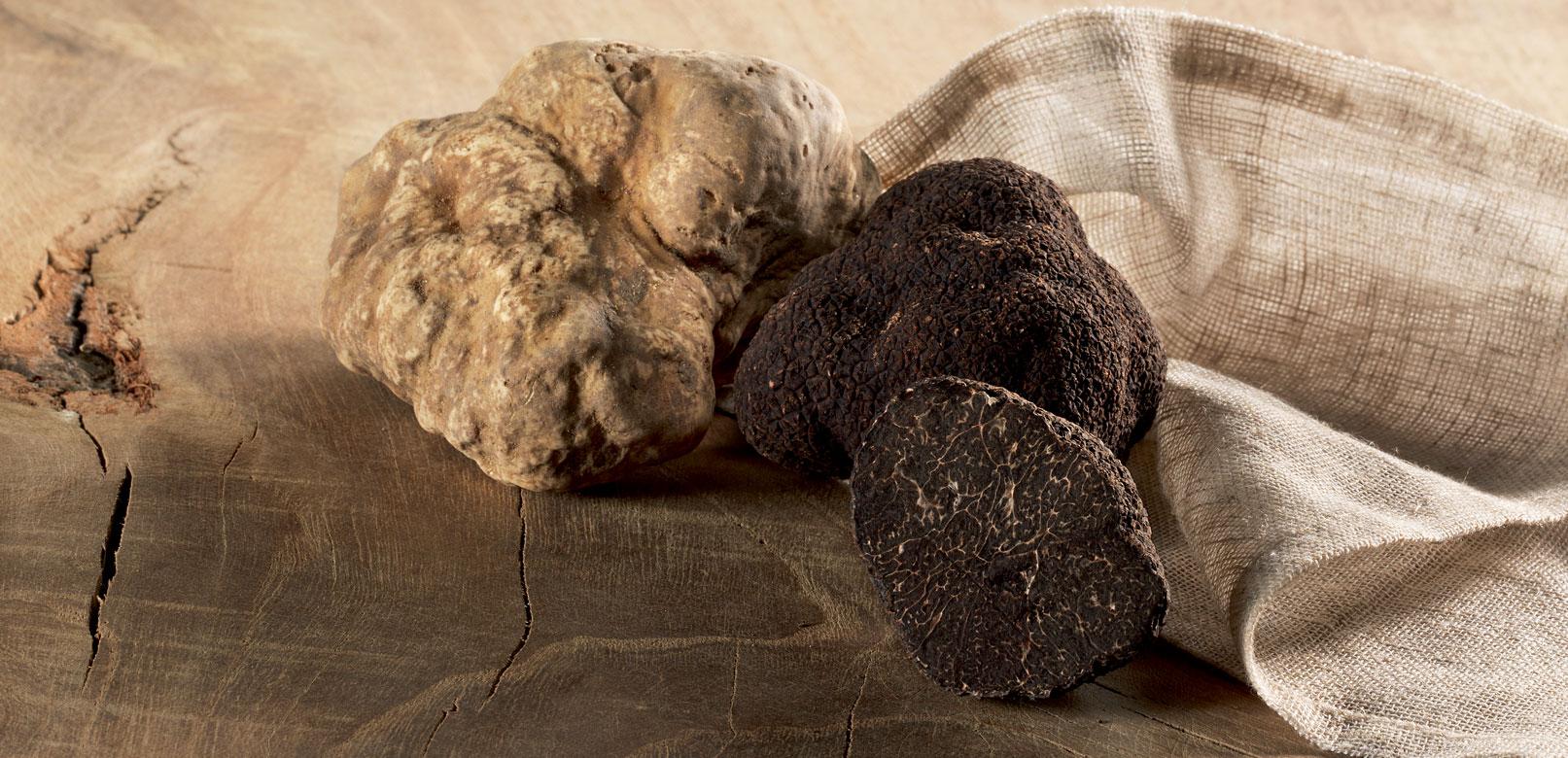 truffels van de Vaucluse © Plantin