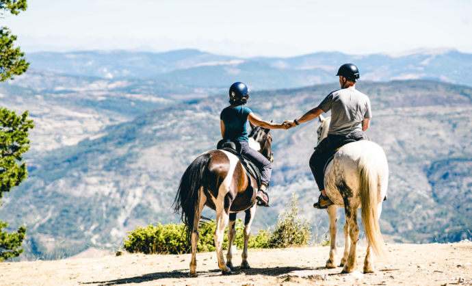 Paardrijtochten - Ventoux