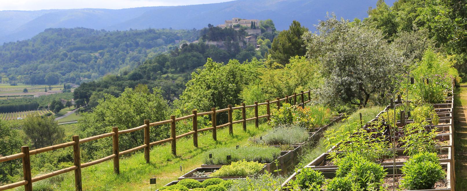 Een botanische ontdekking op het domein La Citadelle