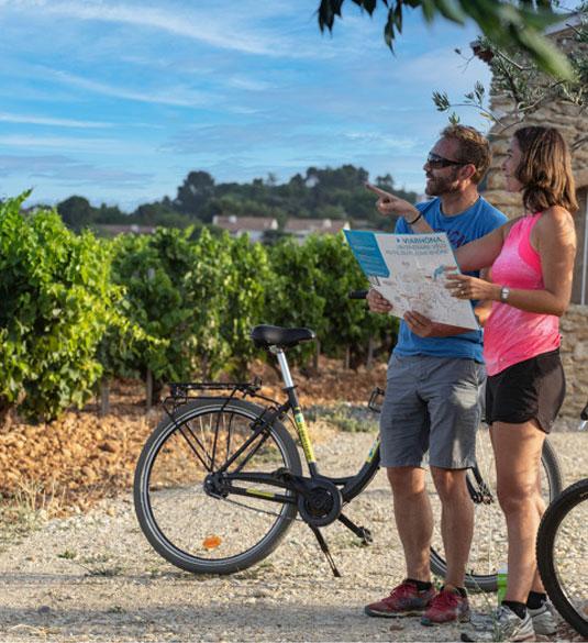 Wijn en Rhônevallei
