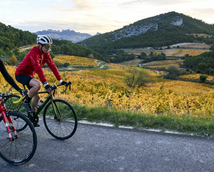 Wijngaarden en fiets © Rosso