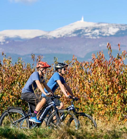 Wijn en de Reus van de Provence