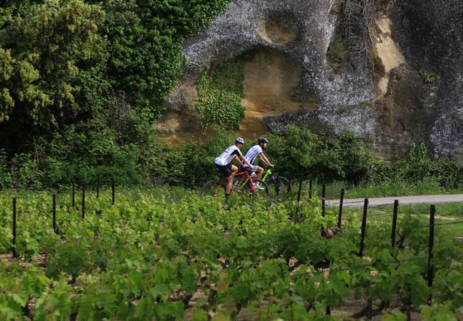 wijngaarden te fietsen